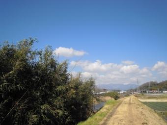 中村川沿い170225