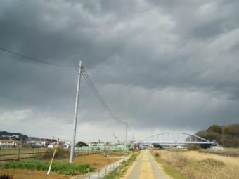花水川左岸170308