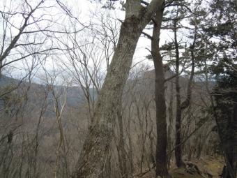 見えている山まで登り返す(栗ノ木洞)170311