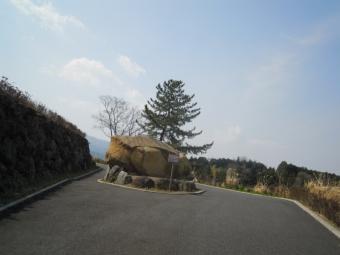 諏訪の原公園170320