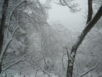 すっかり雪山170401