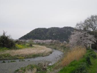花水川沿い170410
