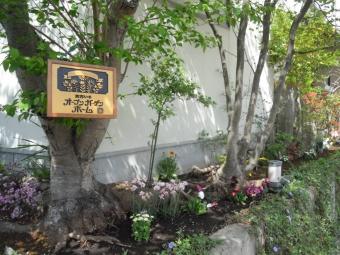 大磯オープンガーデンー2