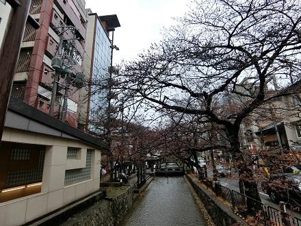 京都祇園0331