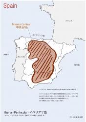 スペイン全土白地図④