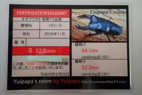 2017_03050004.jpg