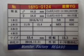 2017_04230001.jpg