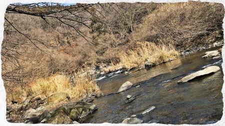 那珂川水系2 (1)