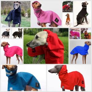 raincoat-2017.jpg