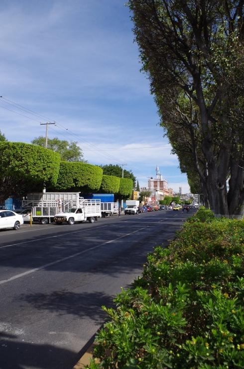 mexico-0159[1]