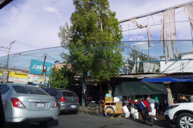 mexico-0206[1]
