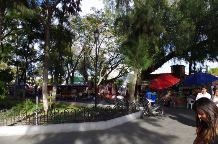mexico-0211[1]