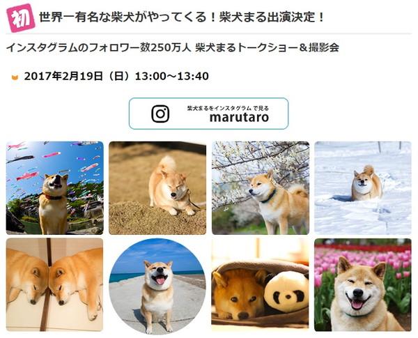 7_20170216143853d7c.jpg