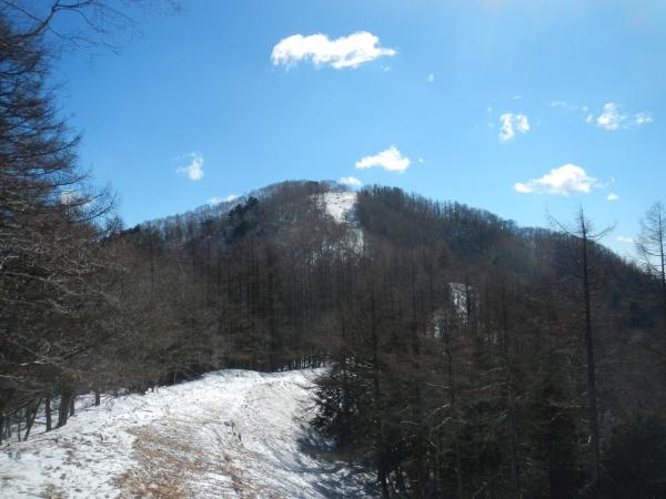 雲取山 014