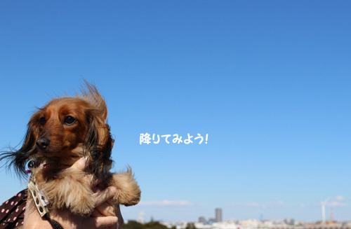2017-2-yokohama5.jpg
