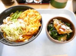 ミニアジ丼と天ぷらうどん