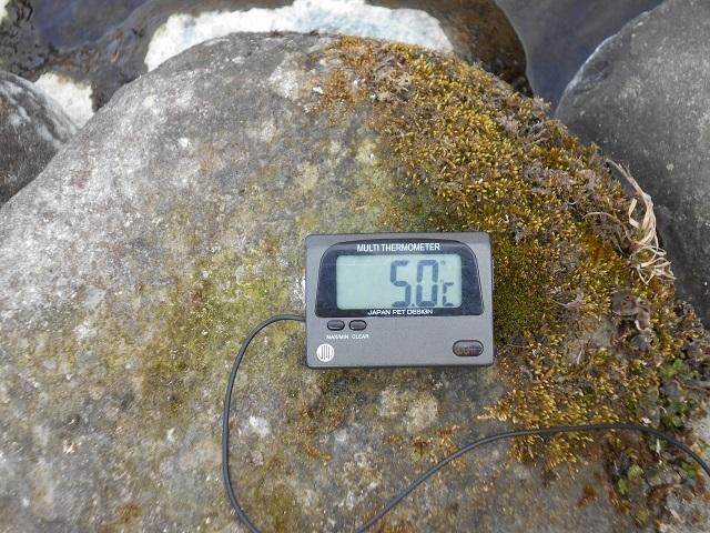 DSCN20600312小黒川関守橋上流の水温