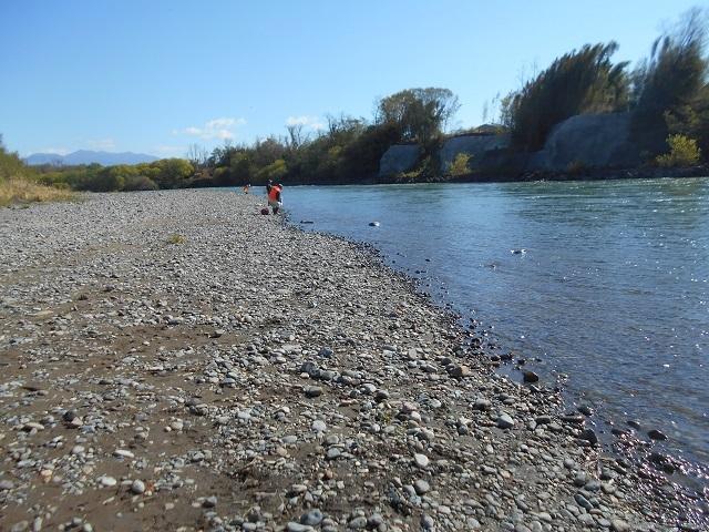 DSCN23120423緑地公園下のニジマス成魚放流の様子.jpg