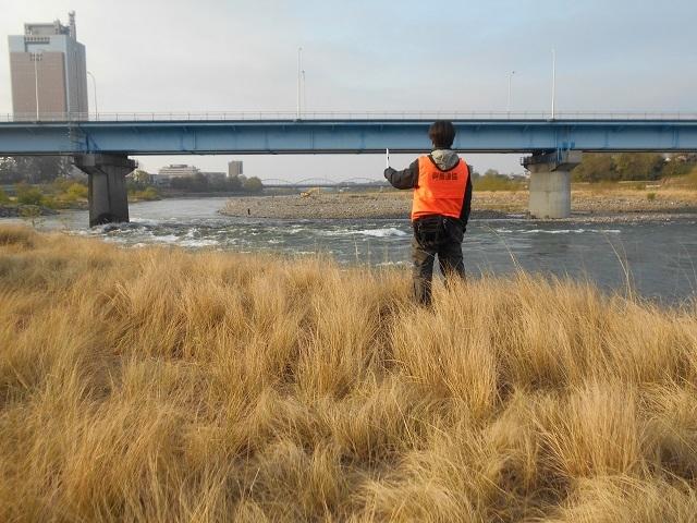 DSCN23220425花火にて川ウの追い払い中央大橋左岸上流