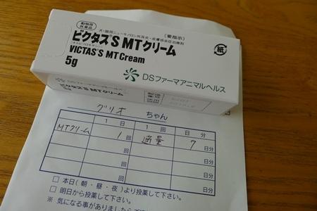 P1100579.jpg