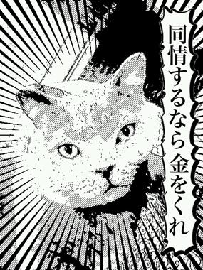mangafu_20121227194306.jpg