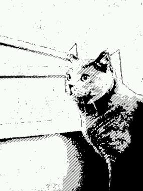 mangafu_20121228001147.jpg