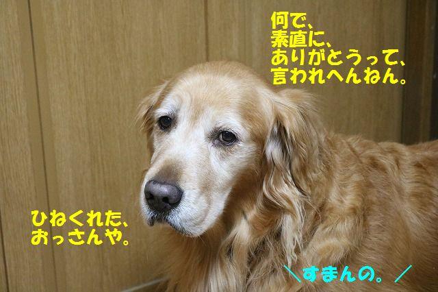 IMG_4483.jpg