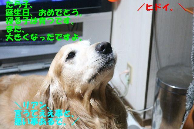 IMG_5922.jpg