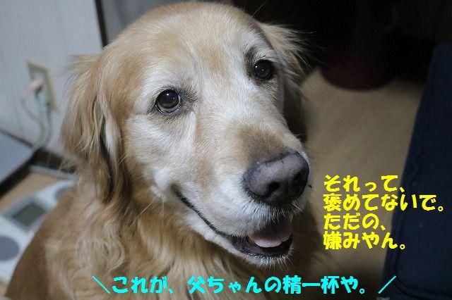 IMG_6161.jpg