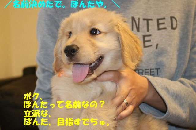 IMG_7180.jpg