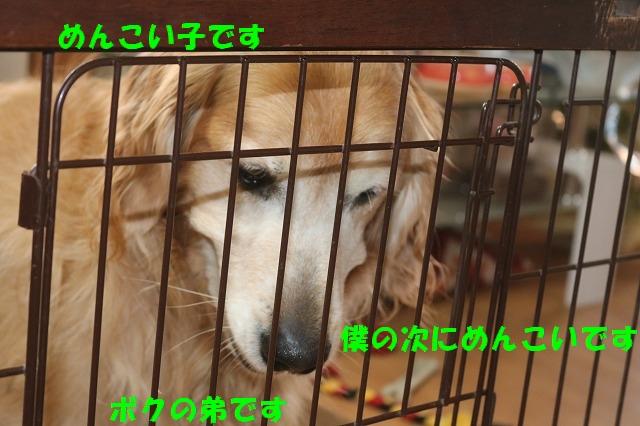 IMG_7272.jpg