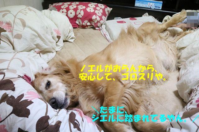 IMG_9932.jpg
