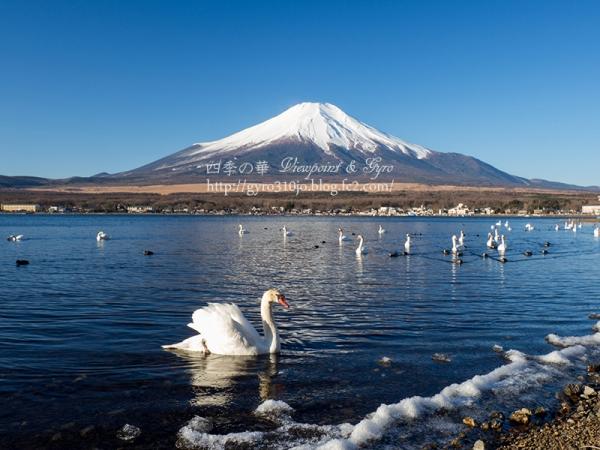 富士山 G