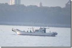 170227008 船の周りにカモメ類、船にサギ類