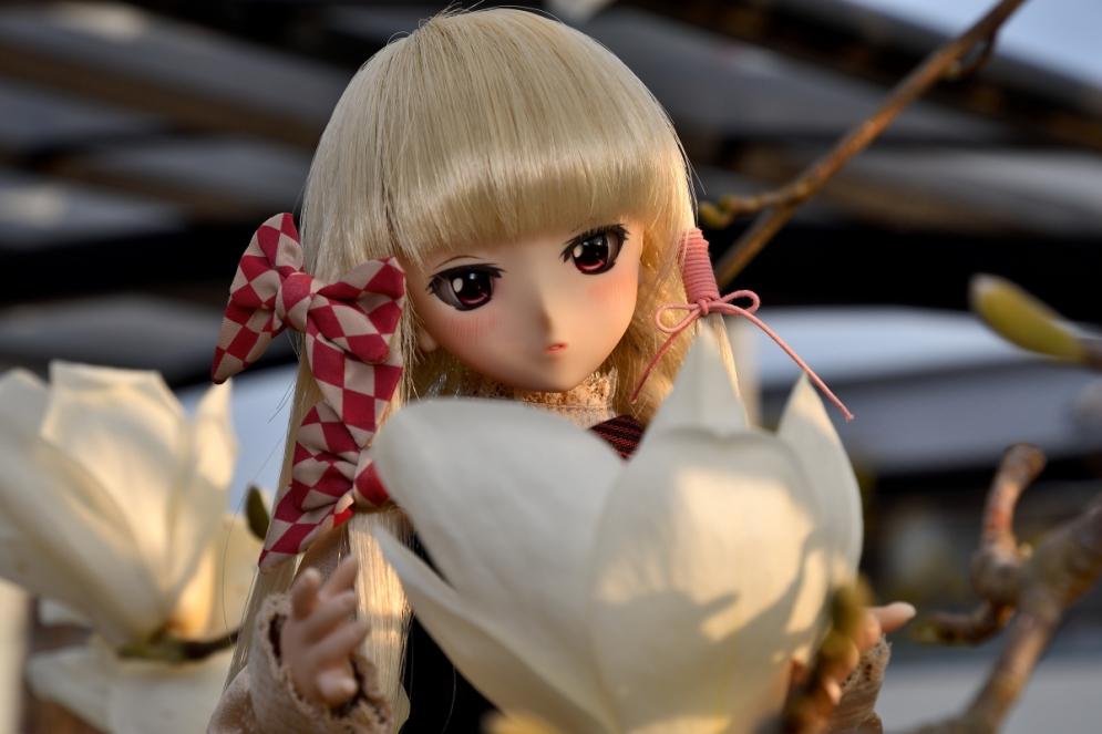 神目と木蓮ブログ用_027