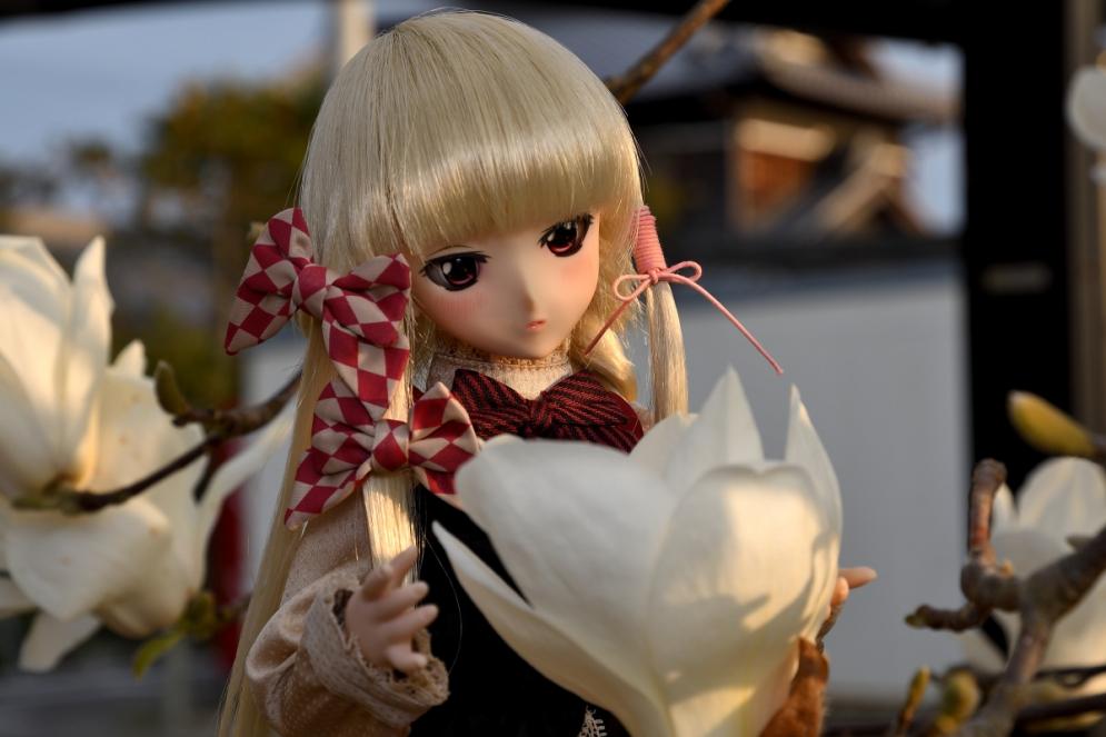 神目と木蓮ブログ用_030