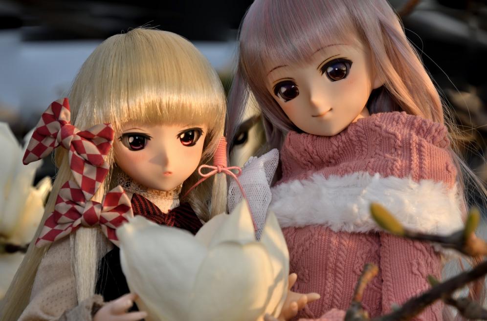 神目と木蓮ブログ用_020