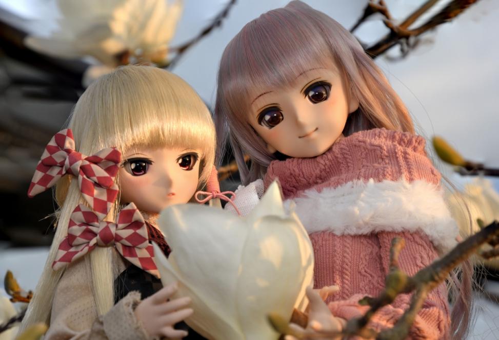 神目と木蓮ブログ用_022