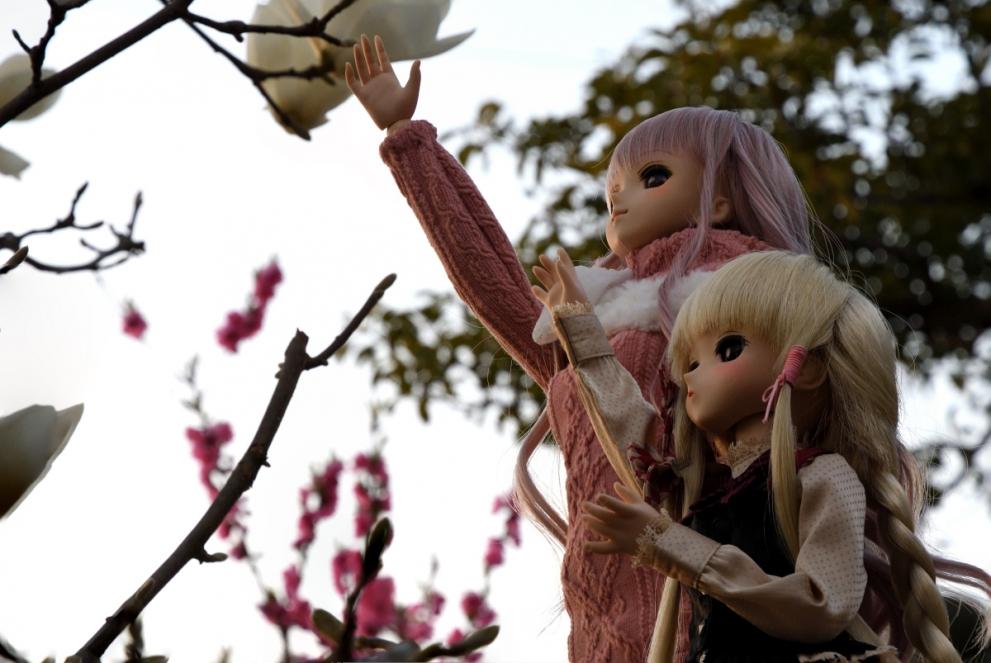 神目と木蓮ブログ用_025