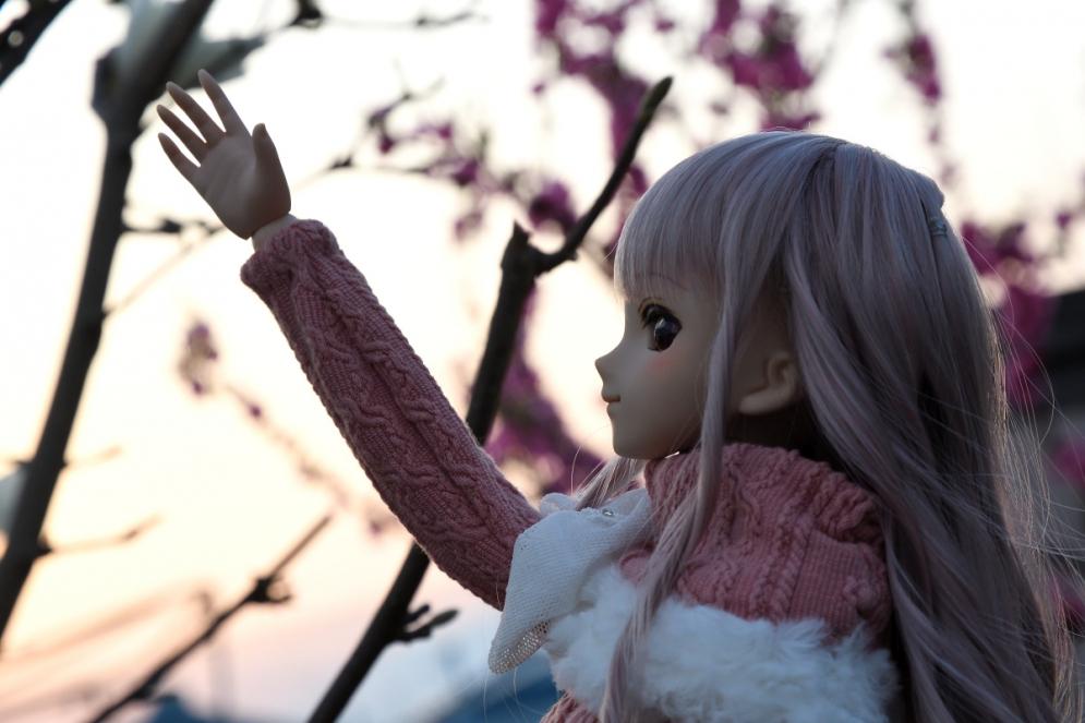 神目と木蓮ブログ用_034