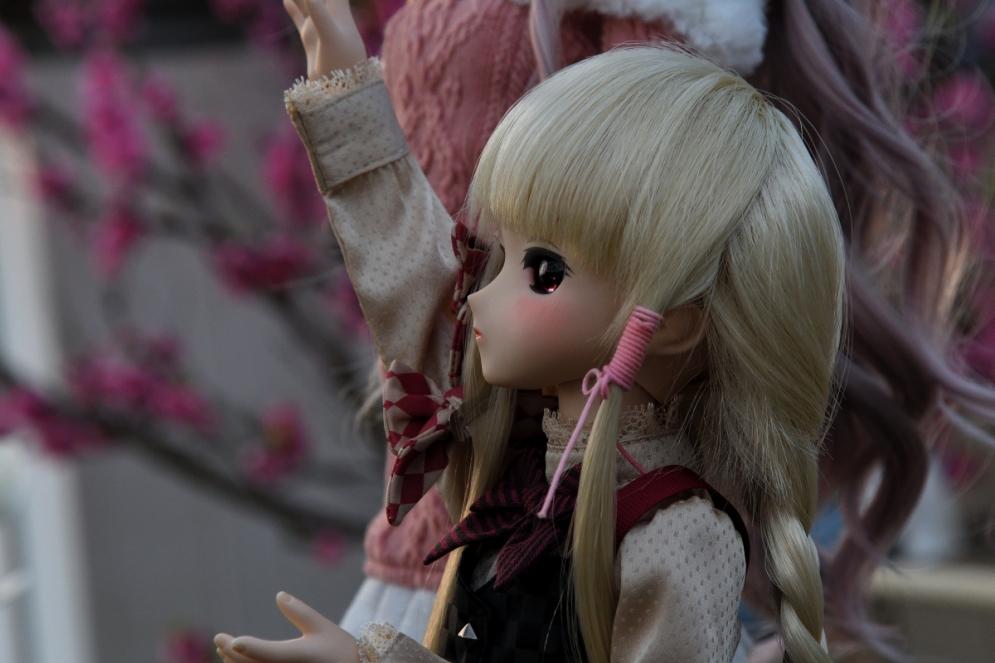 神目と木蓮ブログ用_035