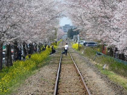 真岡鐵道06