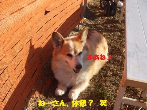 053_convert_20170328040517.jpg