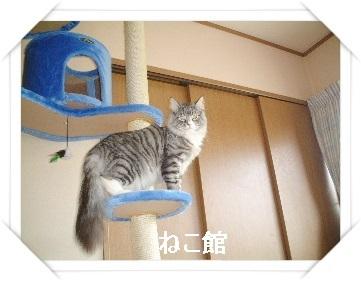 blog2_20170426161418afb.jpg
