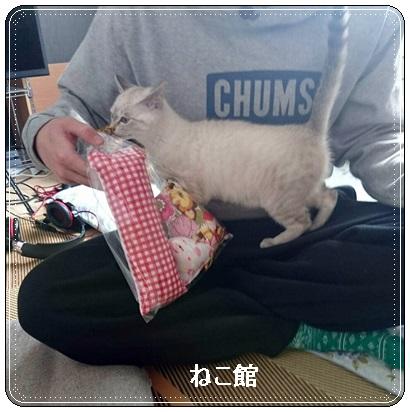 blog3_20170216133931b0c.jpg