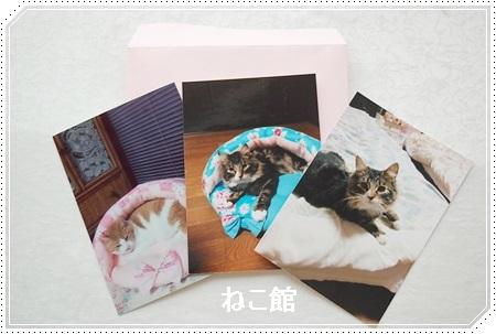 blog4_20170213141047dc0.jpg