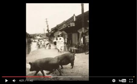 【動画】韓国で新発見された写真集が「危険すぎる歴史の真実」を暴露してしまう事態に!「これが、この世の地獄というものか・・」 [嫌韓ちゃんねる ~日本の未来のために~ 記事No15362