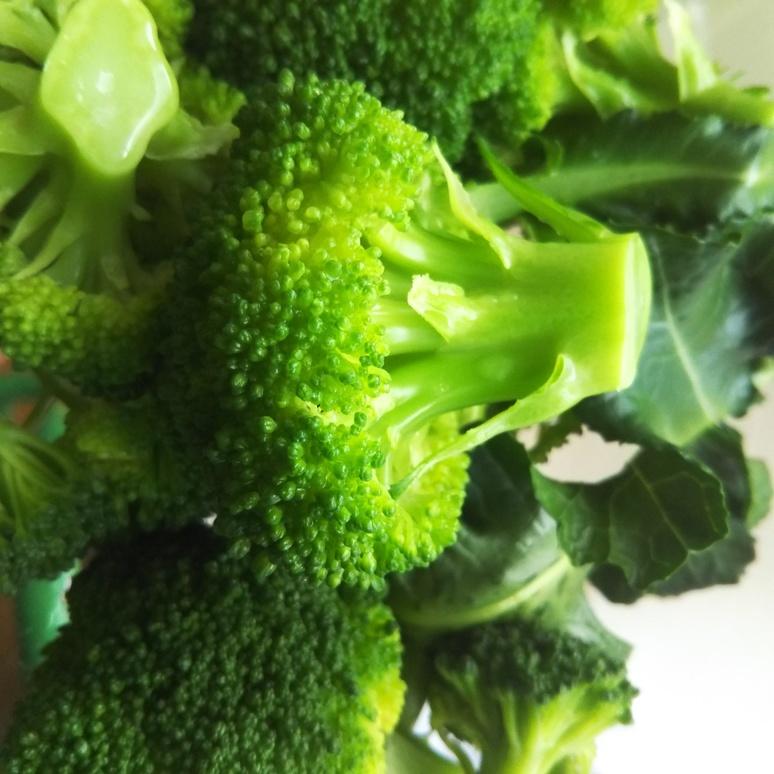 Broccoli 20170321-2