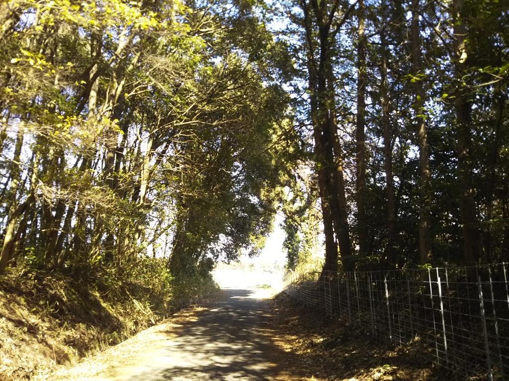 Road 20170227