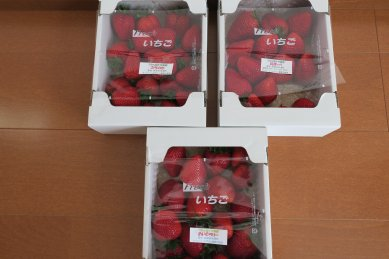 イチゴ三種